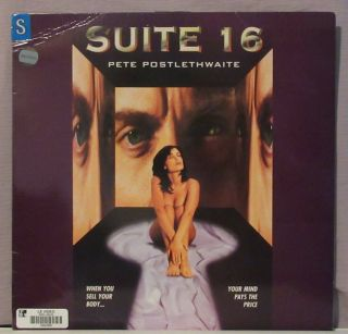 Suite 16 Laserdisc Former Rental In Extremely Rare 7.  5 Of 10