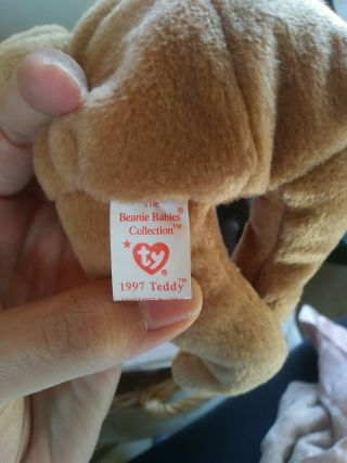 Ty Beanie Baby 1997 Holiday Teddy Bear (1996) - Style 4200 - ERRORS 5