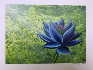 Black Lotus - Limited Edition Signed Print - Christopher Rush - 35/100 Signed Mtg