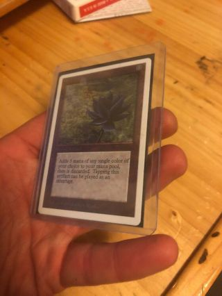 Estate Find MTG Black Lotus Near (read The Description) 5