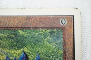 BLACK LOTUS unlimited MAGIC THE GATHERING MTG card 6