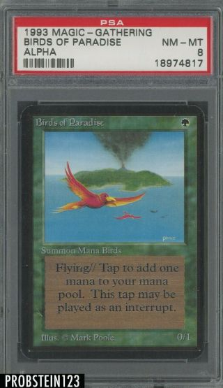 1993 Magic The Gathering Mtg Alpha Birds Of Paradise Psa 8 Nm - Mt