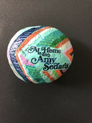 At Home With Amy Sedaris Craft Rock Handpainted By Amy
