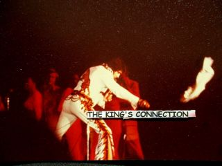 - Photo - Elvis Throwing Scarfcaught By Camera Mid - Air - Dayton Ohio 10/05/74