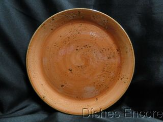 Steelite Performance Craft,  England: Terracotta Coupe Dinner Plate (s),  10 ""